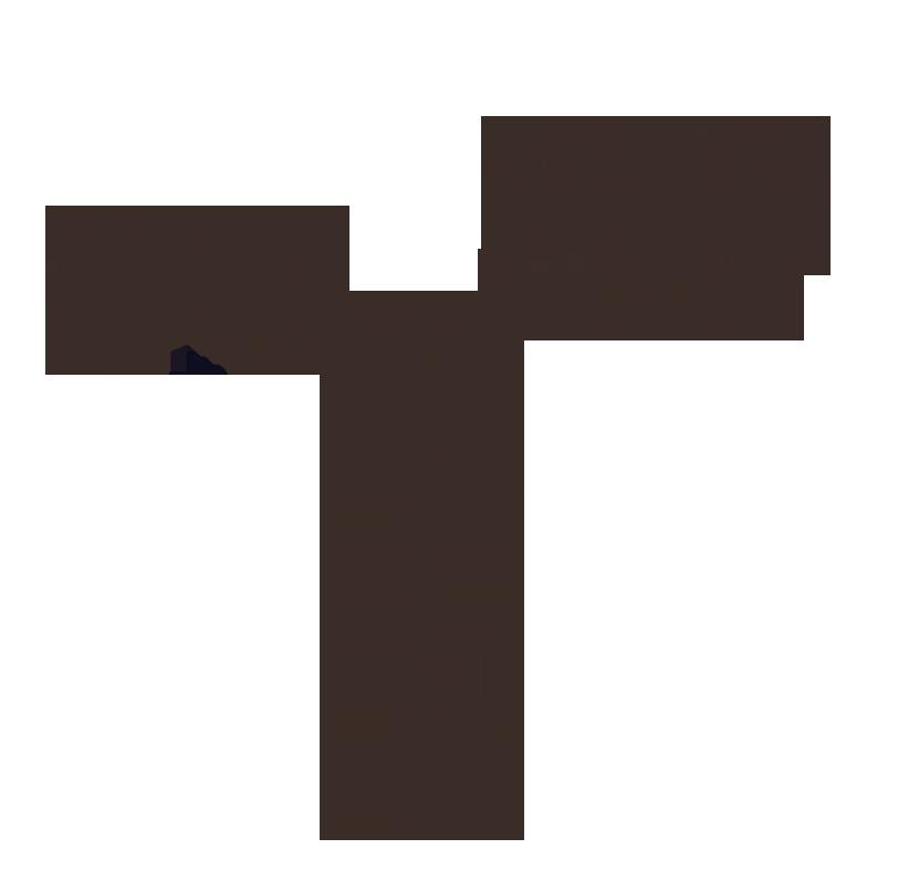 the-visit_studiopepe_logotipo